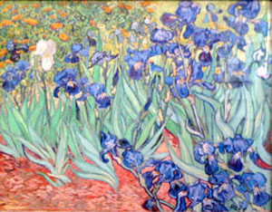 """Irises,"" by Vincent Van Gogh"