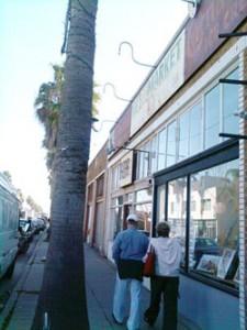 Palm tree-lined Abbot Kinney Blvd., Venice, Calif.