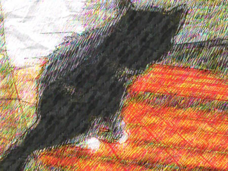 "Photographed Shadow, the cat, with the app, ""Paper Artist,"" which offers a variety of expressive options."