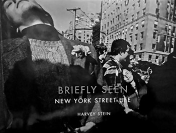 Briefly Seen - a book by Harvey Stein