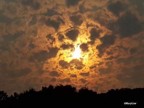 Autumn Sky, photo by Mary Gow